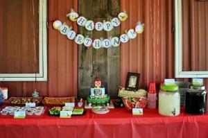 birthday party venue dallas