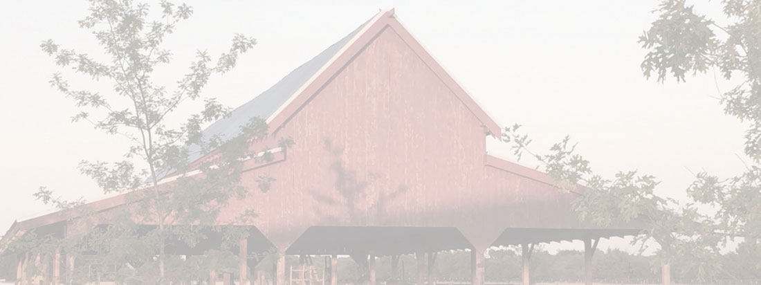 cropped-banner-red-barn-light