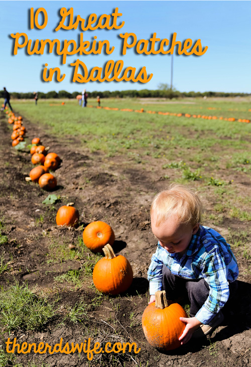 Pumpkin patches in dallas & fort worth | north texas area | 2017.
